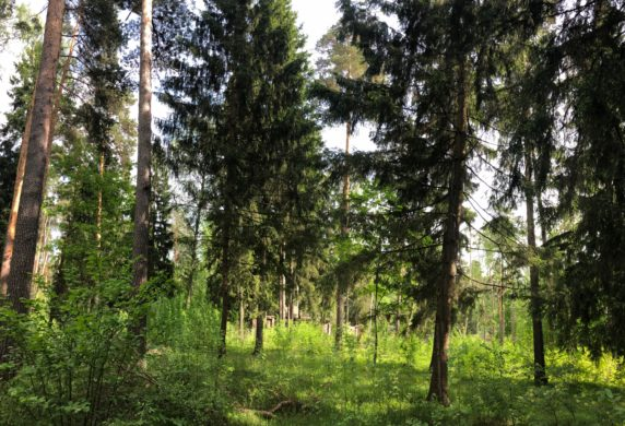 Продается участок вэлитном поселке «Балатон», расположенном всего в16 км отМКАД