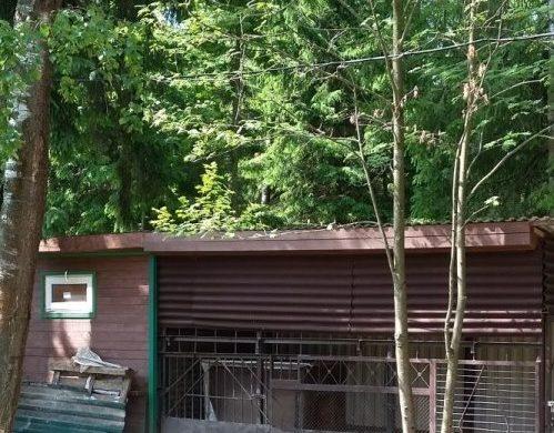 Дом 128м2 вСНТ «Фомкино»
