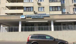 Готовый арендный бизнес (ветеринарная клиника) Академика Пилюгина,6